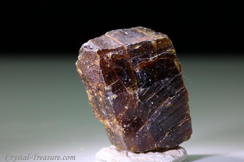 tremolite-thin-section